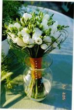 kdyby nebyly tulipany - ale v ruzove