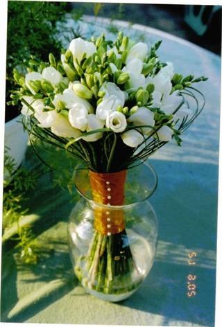 Co uz mame - kdyby nebyly tulipany - ale v ruzove