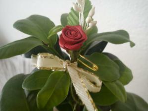 Tak nejak budu vyzerat naše pierka - samozrejme zelene mi posluzila nasa kvetina