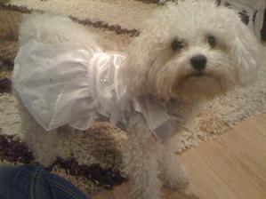 aj nasa princezna ma uz svadobky :)