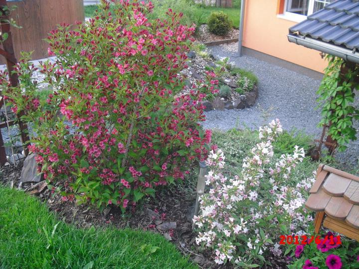 Zahrada a okolí - Obrázek č. 79
