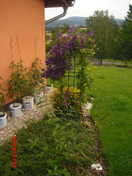 Zahrada a okolí - Obrázek č. 90