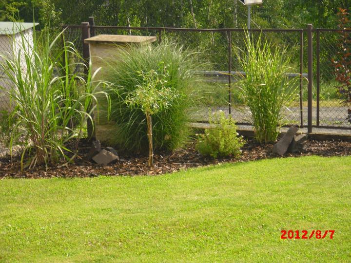 Zahrada a okolí - Obrázek č. 113