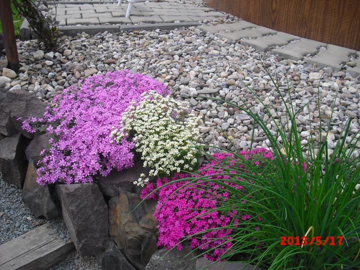 Zahrada a okolí - Obrázek č. 6