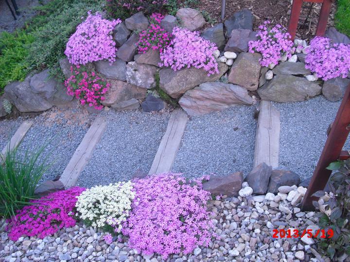 Zahrada a okolí - Obrázek č. 151