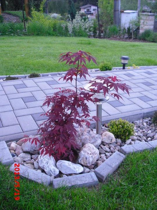 Zahrada a okolí - Obrázek č. 159
