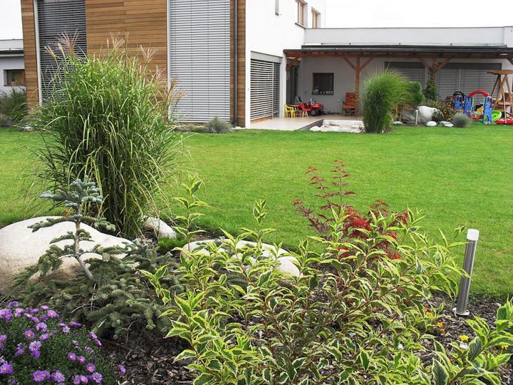 Zahrada-můj sen a inspirace - Obrázek č. 21