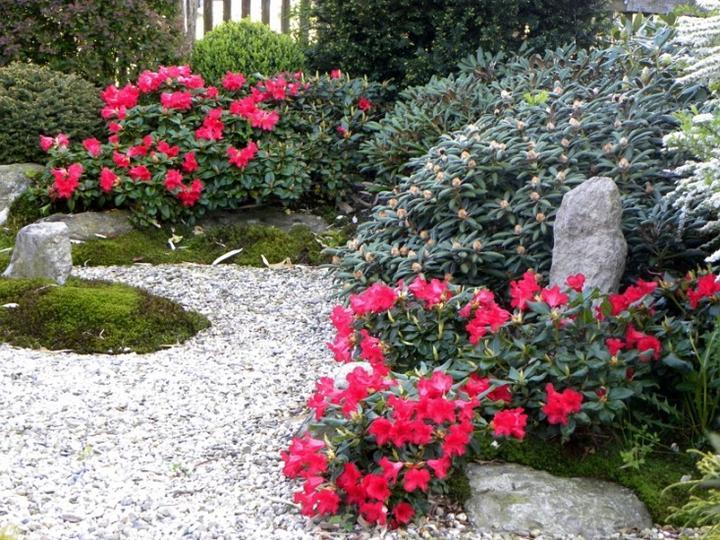Zahrada-můj sen a inspirace - Obrázek č. 46