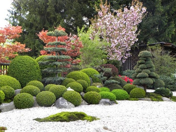 Zahrada-můj sen a inspirace - Obrázek č. 50
