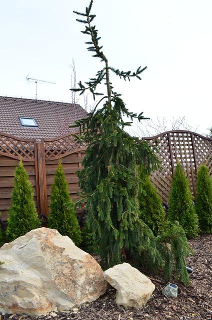 Zahrada-můj sen a inspirace - Obrázek č. 62