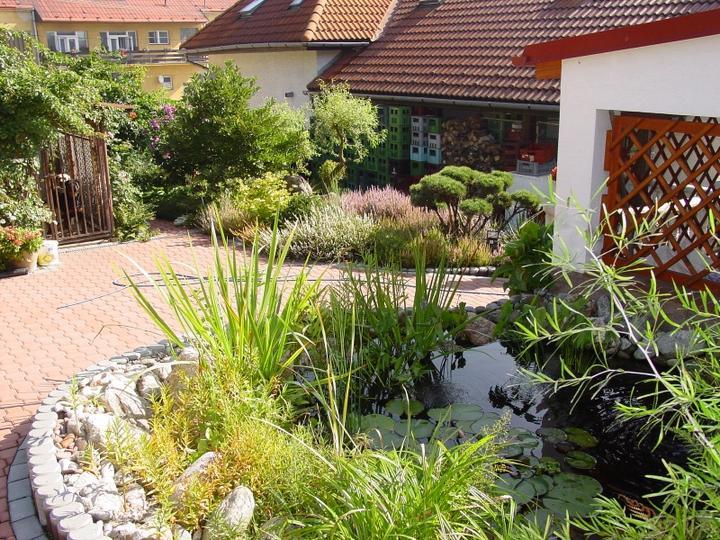 Zahrada-můj sen a inspirace - Obrázek č. 71
