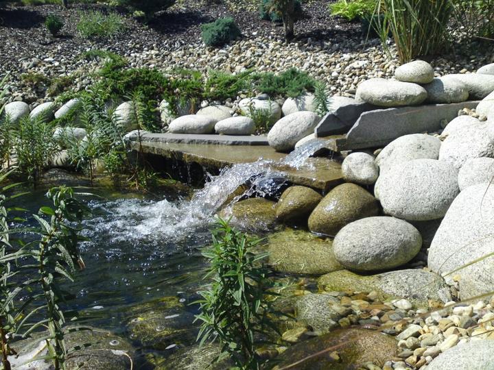 Zahrada-můj sen a inspirace - Obrázek č. 74