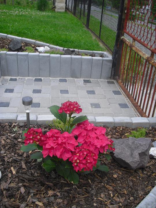 Zahrada a okolí - Obrázek č. 34
