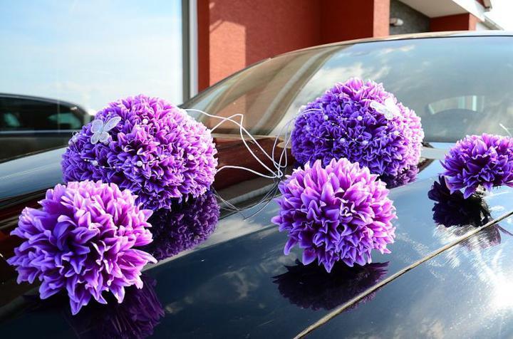 Purple Wedding Dreams..:o) - Obrázok č. 8