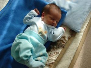 Adámek...narodil se 24.3.2007