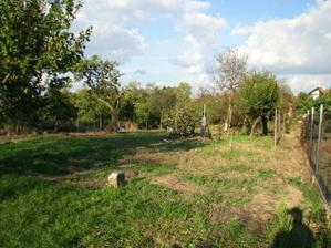 Jeseň 2010 - Čistenie pozemku - výrub stromov