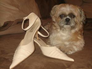 ..moje topánočky pod dohladom hlavnej družičky :)