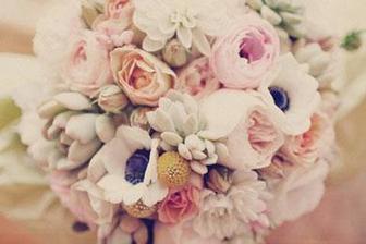 Kvetinarka zajednana :) - Biely atelier