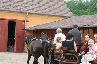 projížďka kočárem pro svatebčany