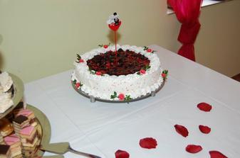 naša torta (tvarohovo-ovocná)