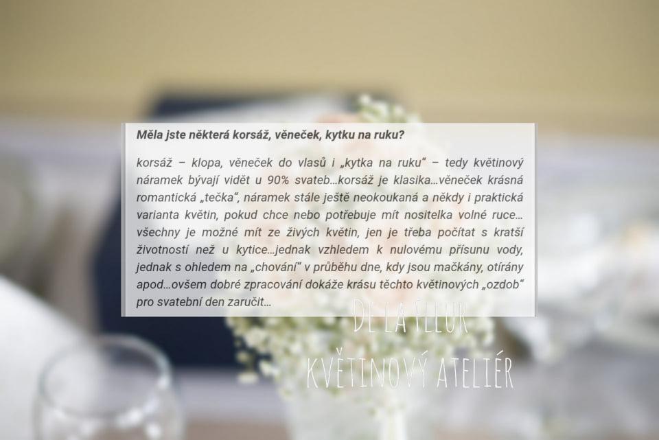 Nejvíce diskutované květinové otázky z internetu… - Obrázek č. 14