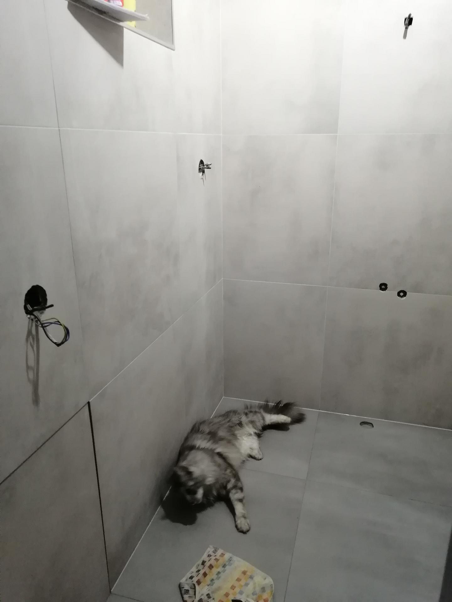 Rekonstrukce koupelny - Obrázek č. 14