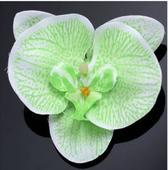 Orchidea zelená do vlasů 2ks,