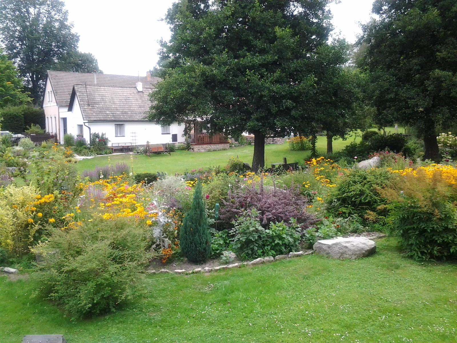 Jihočeská venkovská zahrada. - Všude samovysemeněné žluté třapatky.