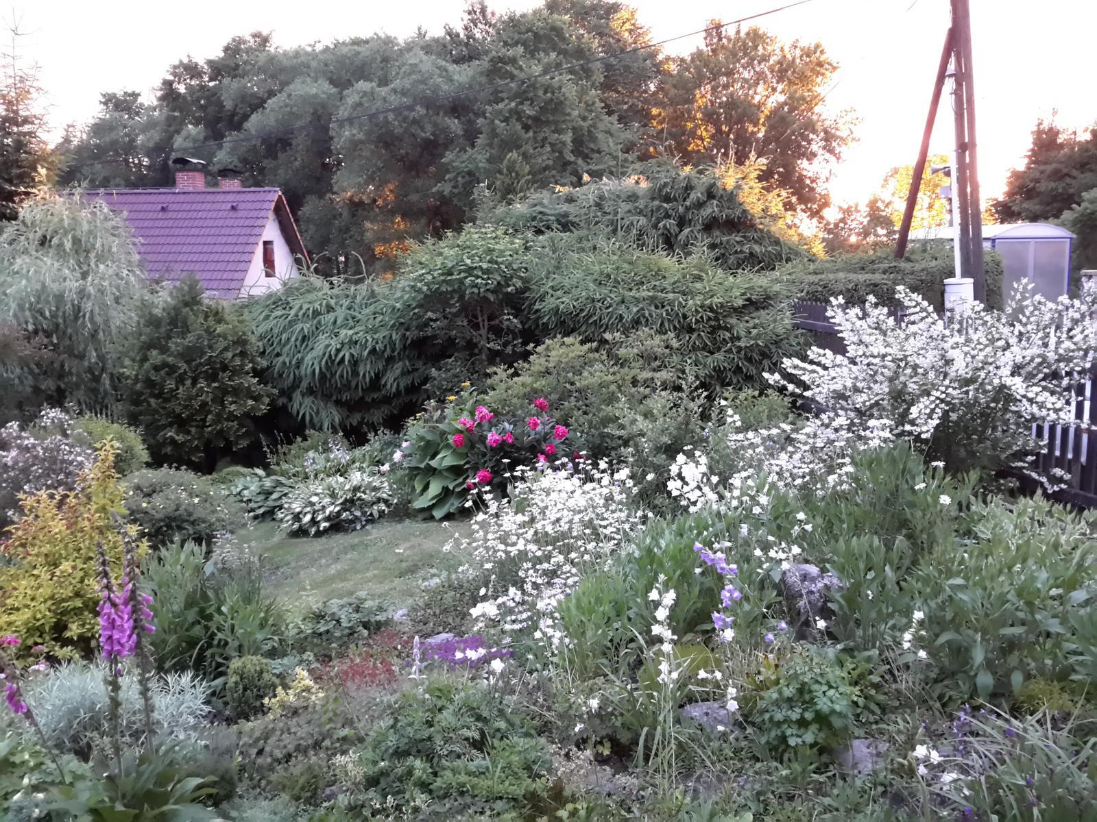 Jihočeská venkovská zahrada. - Miluji bílou nejen v bytě.