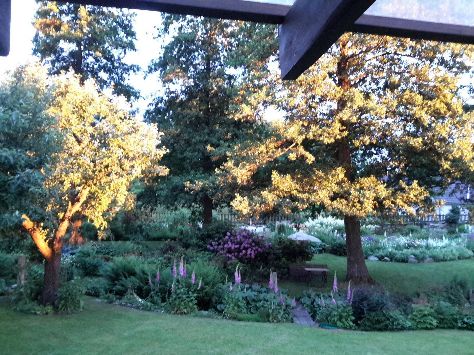 Jihočeská venkovská zahrada. - V obětí zapadajícího slunce.
