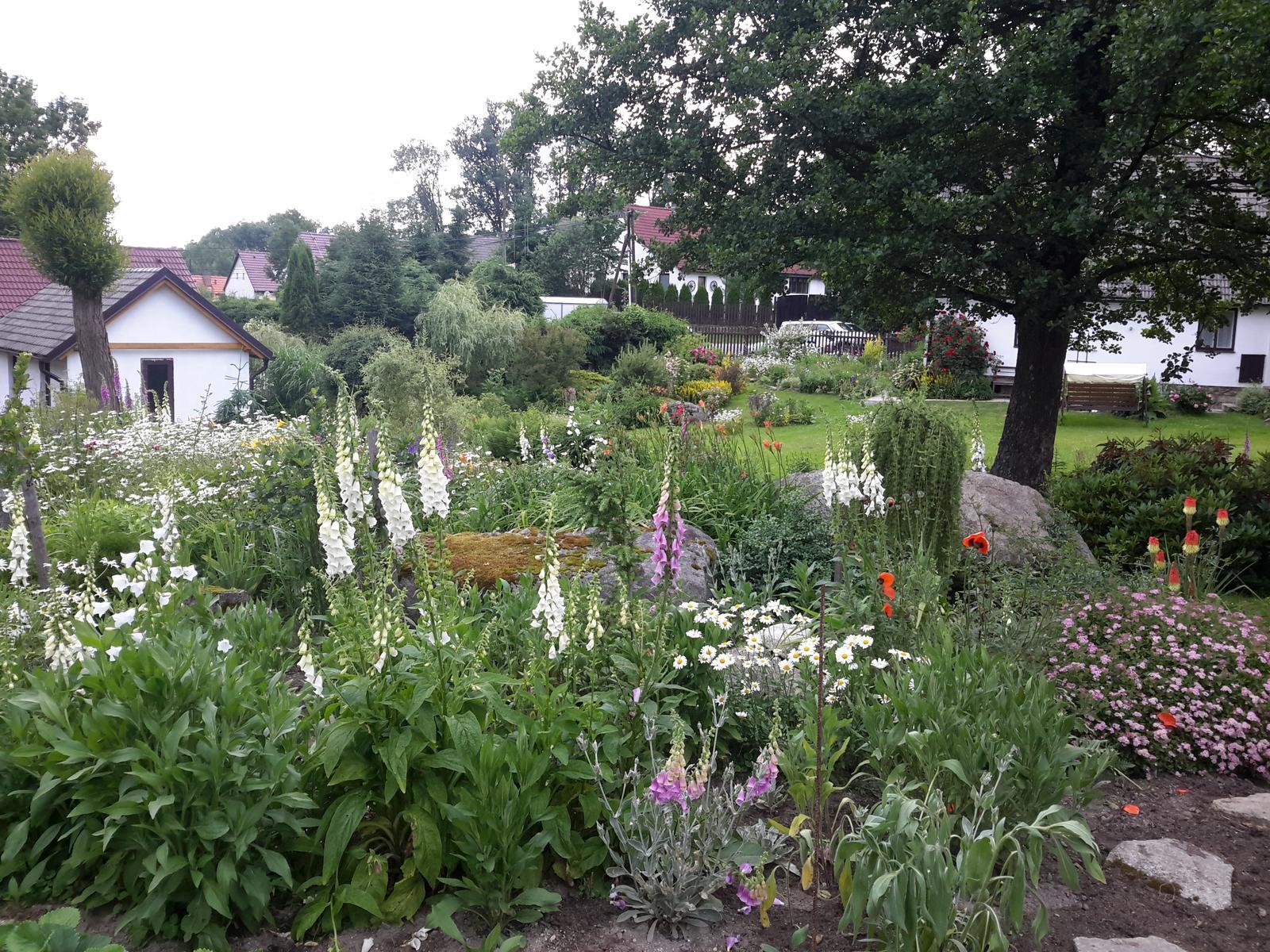 Jihočeská venkovská zahrada. - Bílý digitális se mi moc líbí.