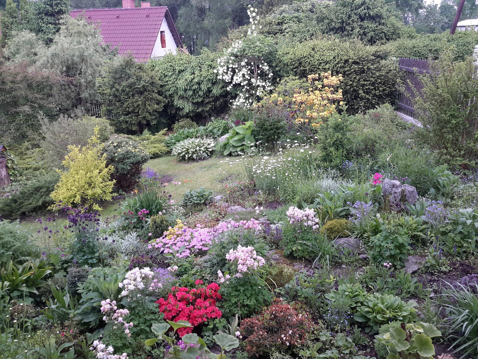Jihočeská venkovská zahrada. - Skalku postupně přeměňuji na záhon azalek.