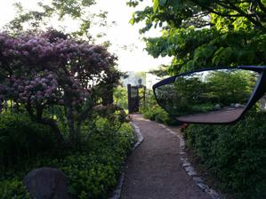 Cyklozrcátko a odraz v japonské zahradě.