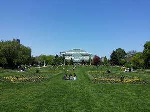 Park a v pozadí skleník