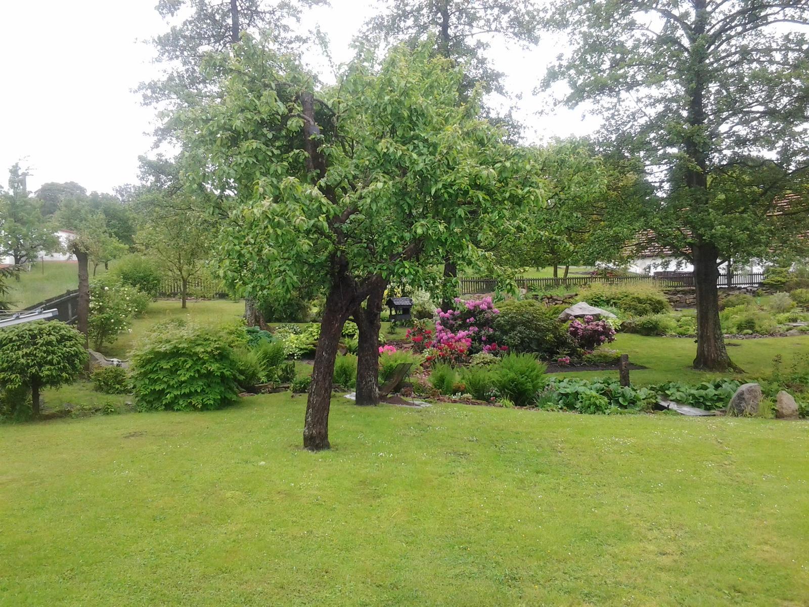 Jihočeská venkovská zahrada. - Jabloně s krmítkem.