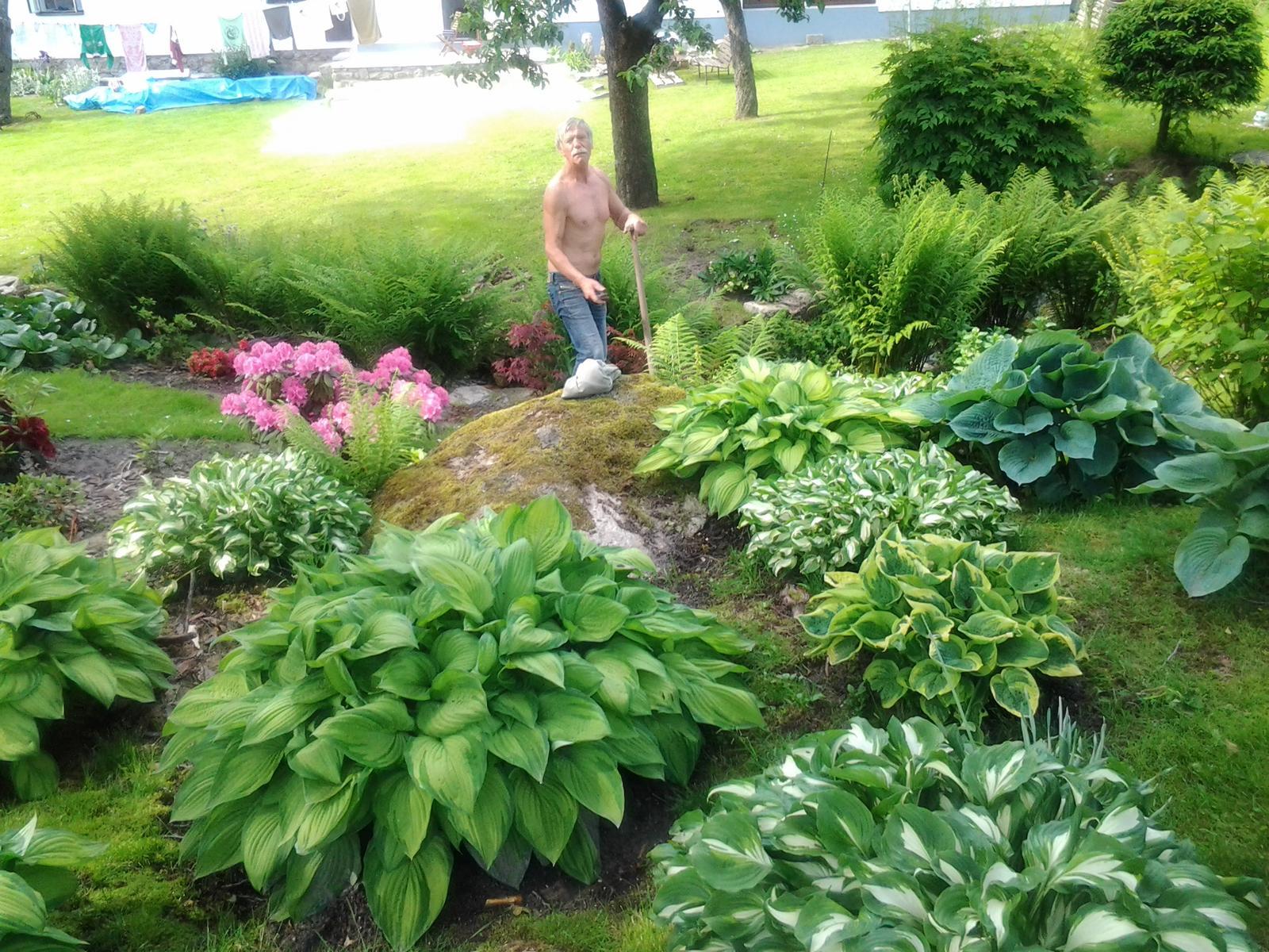 Jihočeská venkovská zahrada. - Hosty jsou vděčné.