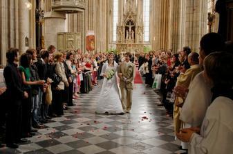překvapení od sboru a architektů - květinové lupínky :-)