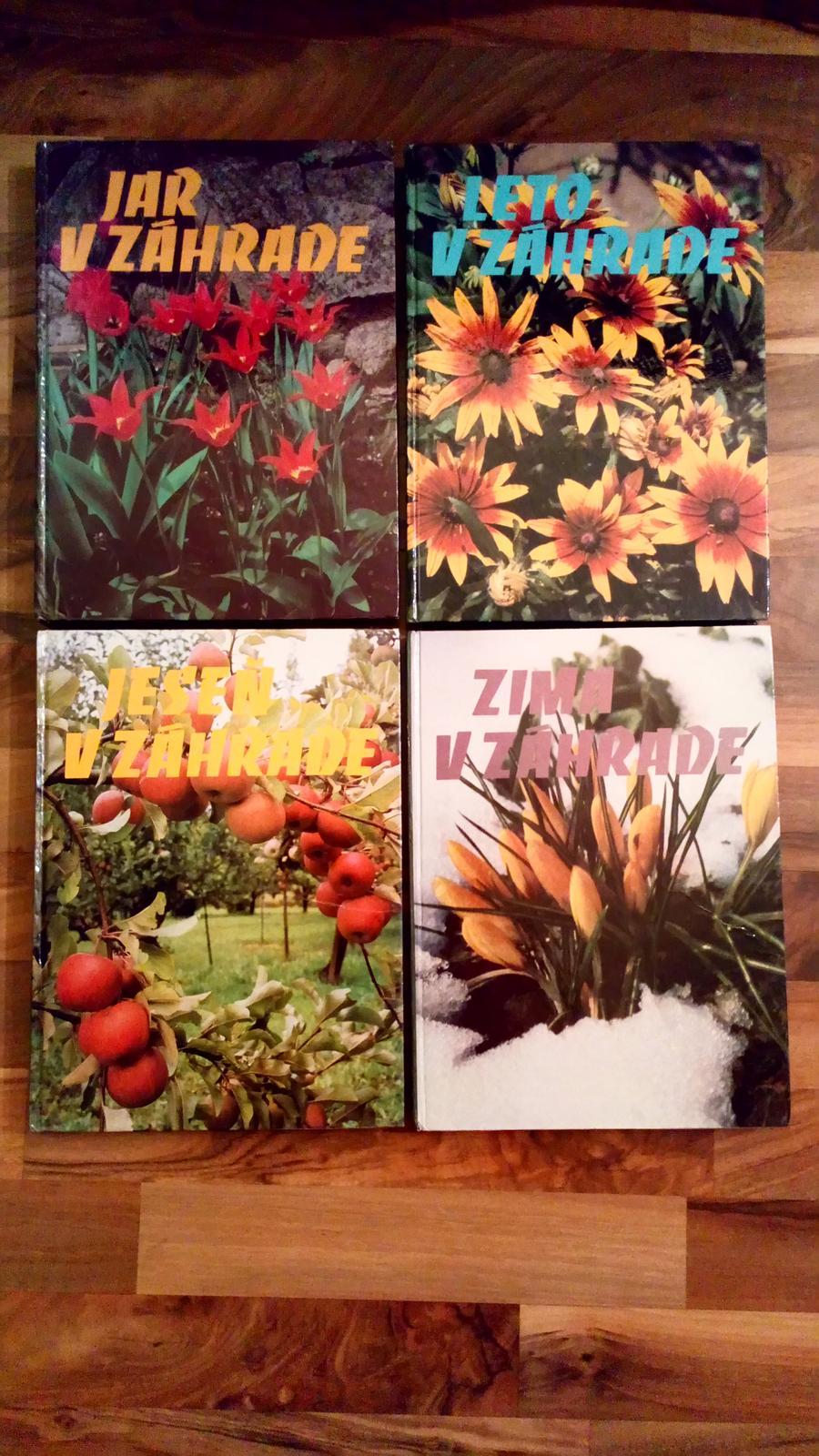 Jar, Leto, Jeseň, Zima v záhrade - Obrázok č. 1