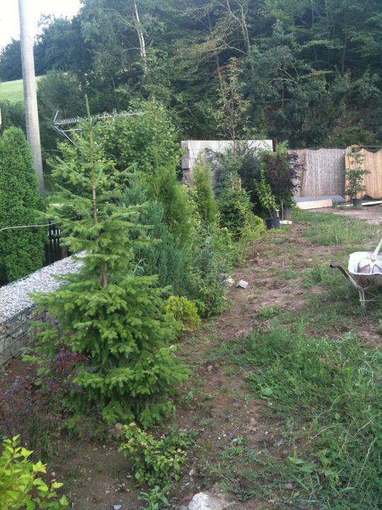 Pokračování našeho stavebního úsilí :)) - za zelenou řadou na gabionu bude ještě dřevěnej plot.
