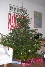Náš stromeček 2007