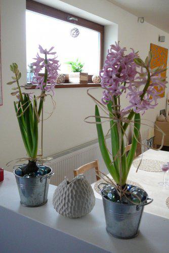 Pokračování našeho stavebního úsilí :)) - trošku jara...