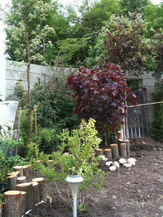 Budoucí zahrada aneb jak to bude - Obrázek č. 99