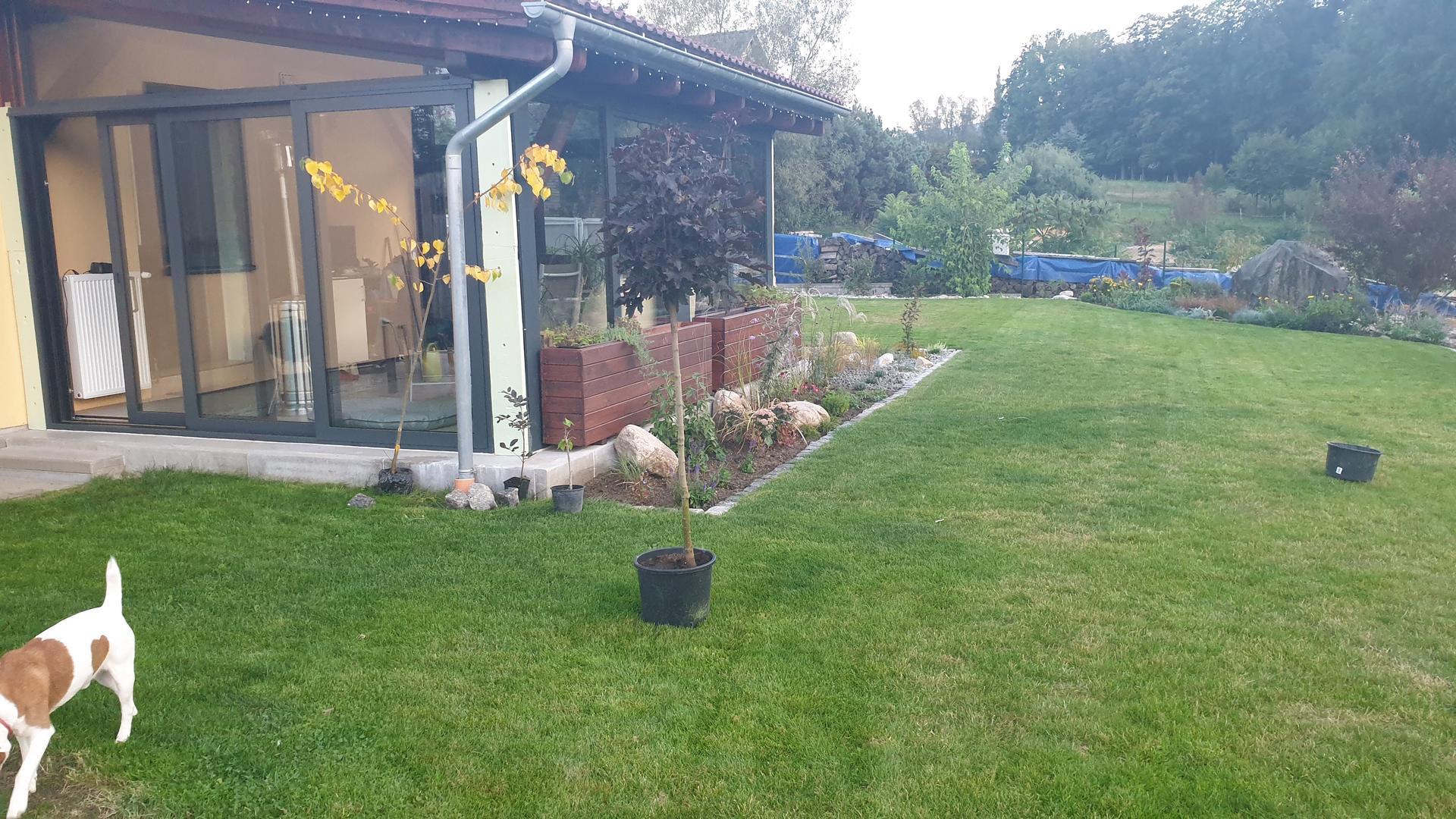Pergola + zimní zahrada + zahrada - Obrázek č. 15