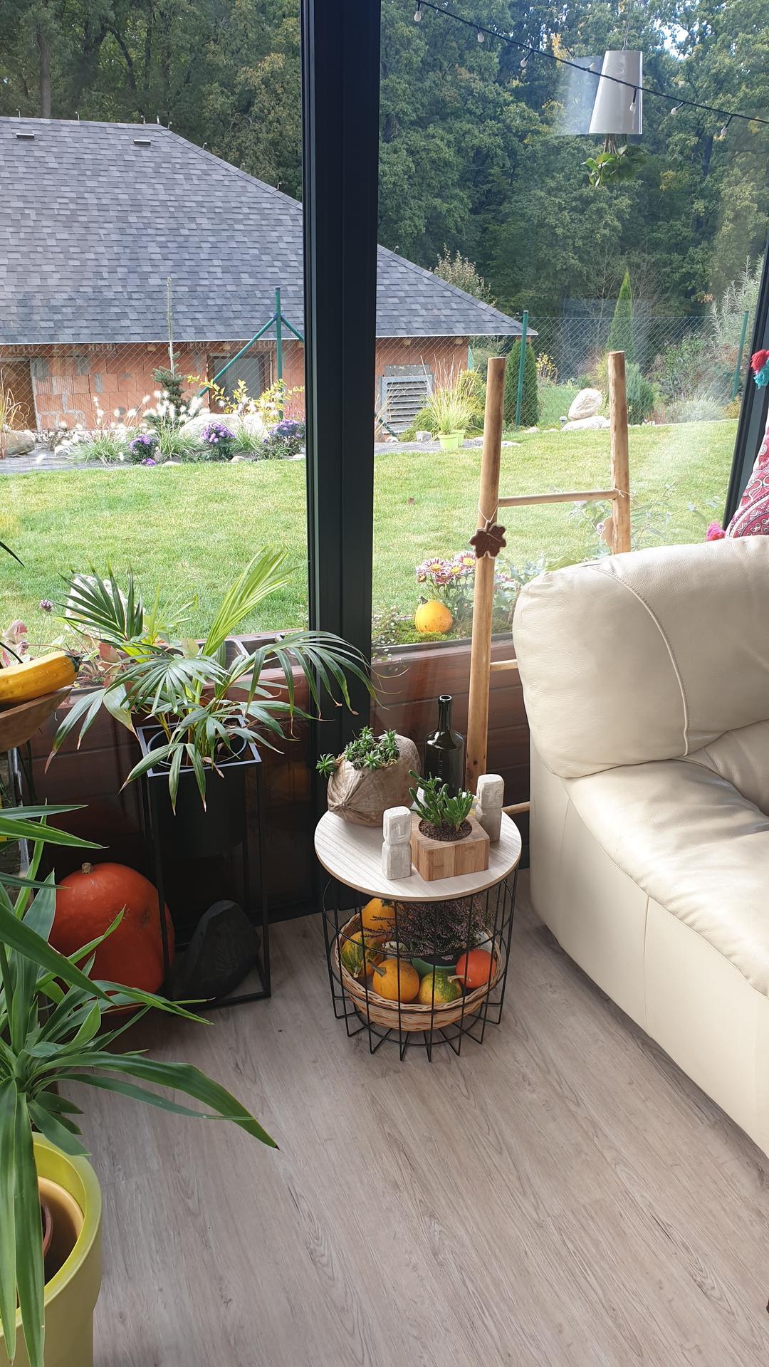 Pergola + zimní zahrada + zahrada - Obrázek č. 18