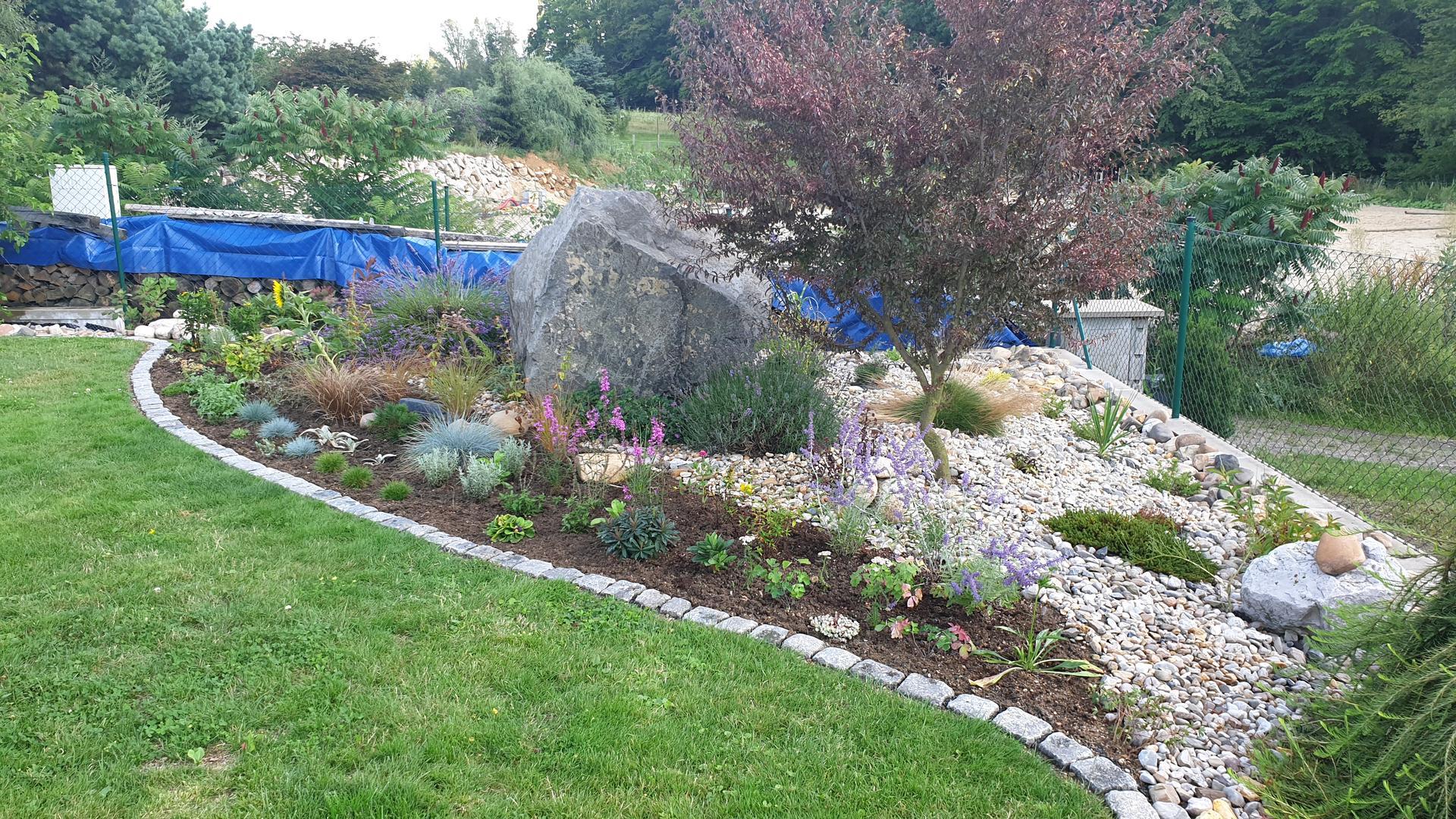 Pergola + zimní zahrada + zahrada - Obrázek č. 24