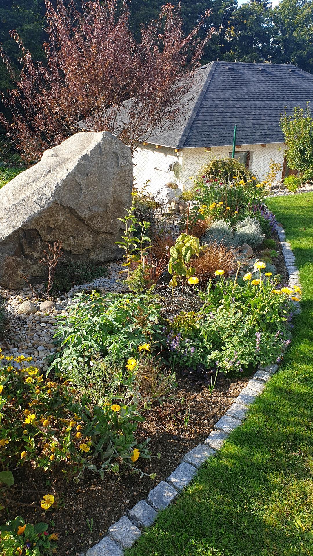 Pergola + zimní zahrada + zahrada - Obrázek č. 25