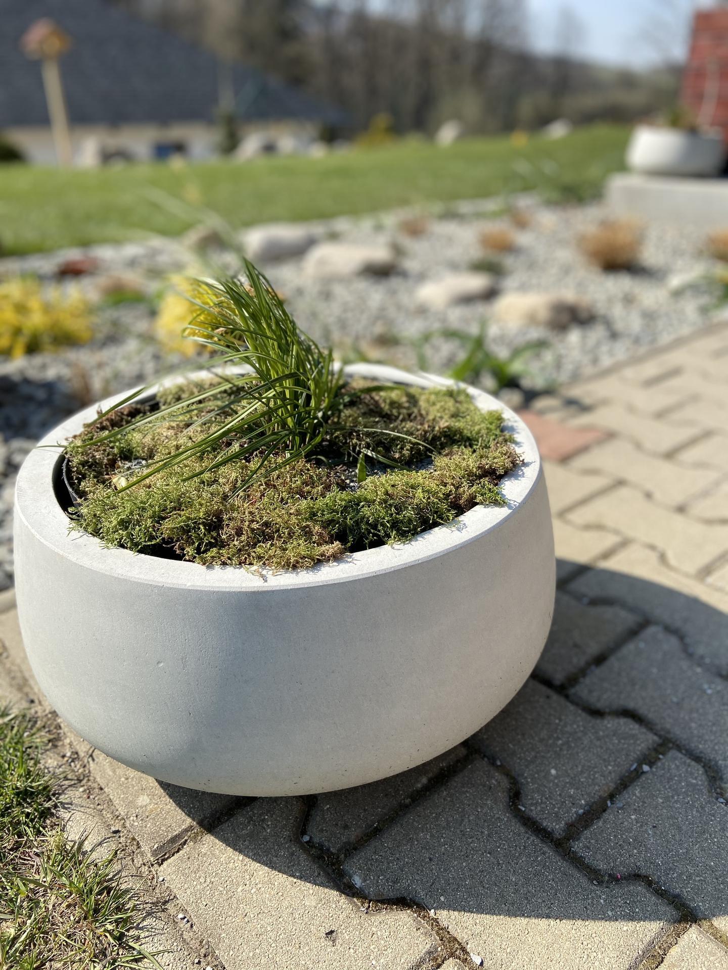 Pergola + zimní zahrada + zahrada - Obrázek č. 43