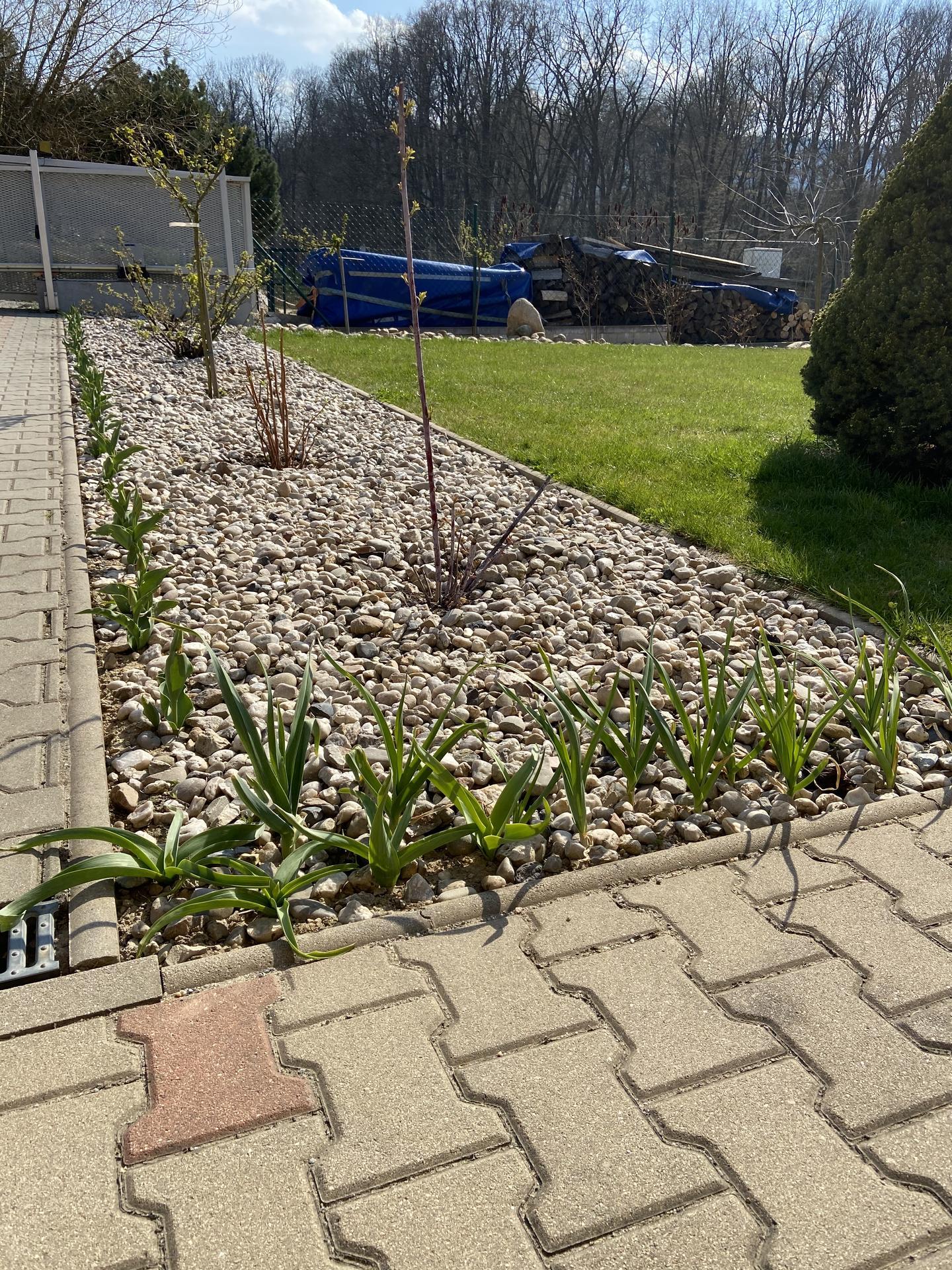 Pergola + zimní zahrada + zahrada - Také vyhližím