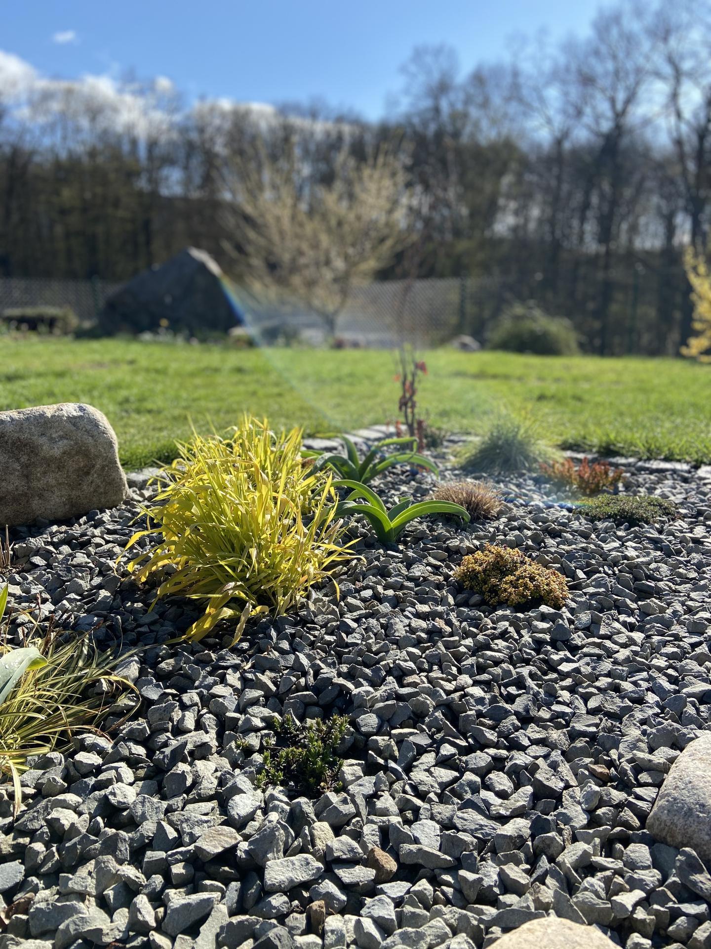 Pergola + zimní zahrada + zahrada - Obrázek č. 54