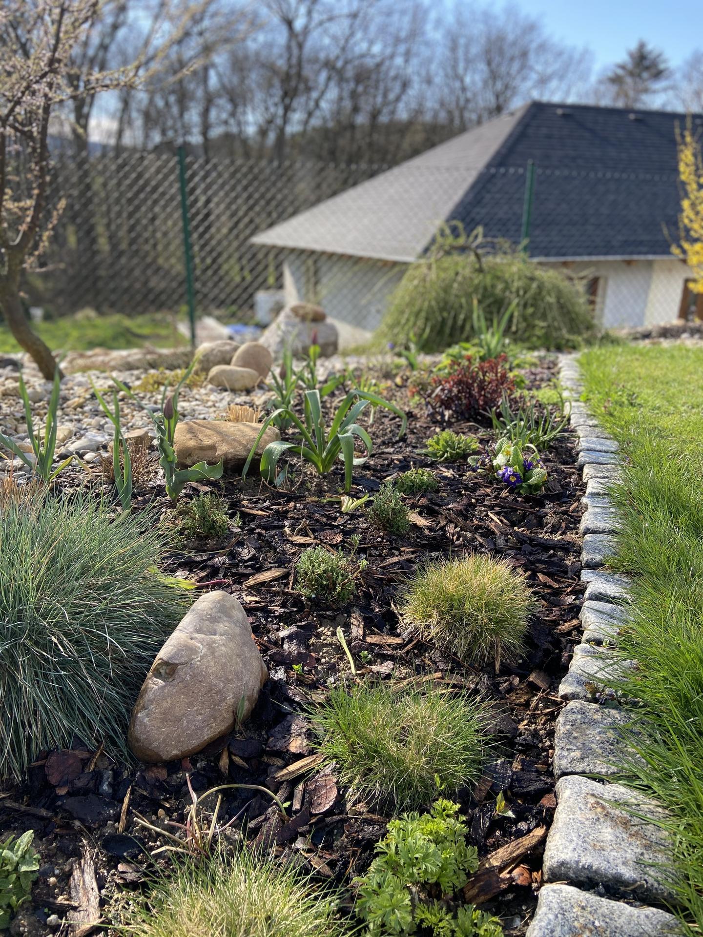 Pergola + zimní zahrada + zahrada - Obrázek č. 56